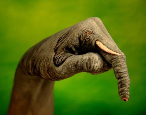 слон из кисти руки