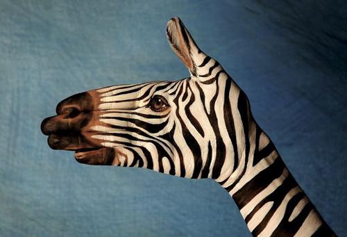 зебра из кисти руки