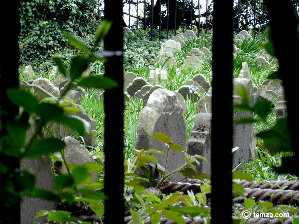pet-cemetery-hyde-park