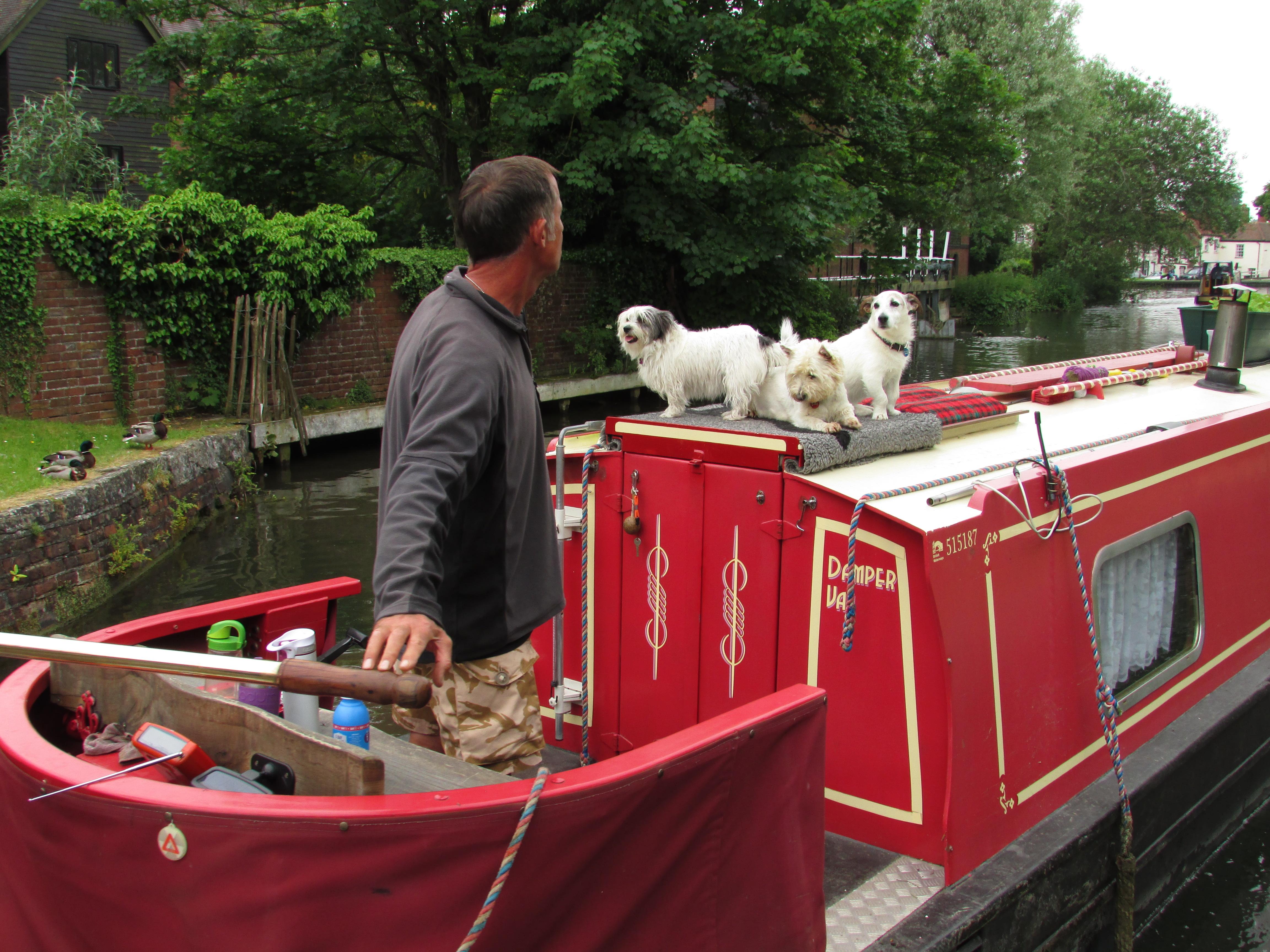 три собаки в лодке в Ньюбури